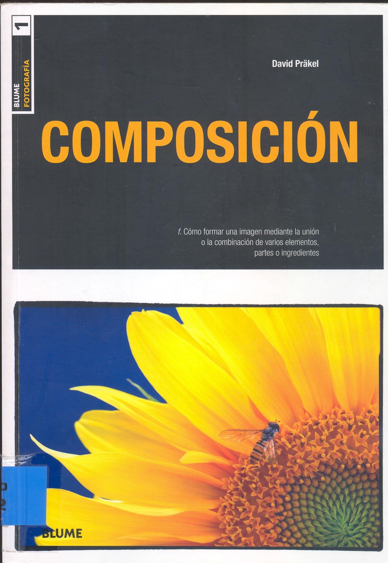 Composicion Fotografica David Prakel Español